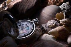 Pocket watch and seashells. Arrangement of a fancy gold pocket watch and seashells royalty free stock photos