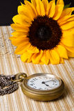 Pocket watch and sunflower Royalty Free Stock Photo