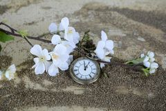 Pocket Watch, Time Of, Sand Royalty Free Stock Images