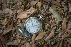 Pocketwatch με τα ξηρά φύλλα Στοκ εικόνες με δικαίωμα ελεύθερης χρήσης