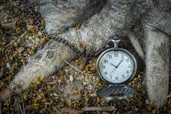 Pocketwatch με τα ξηρά φύλλα Στοκ Εικόνα