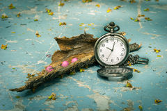 Pocketwatch with dry wood Royalty Free Stock Photography
