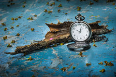 Pocketwatch with dry wood Stock Photo