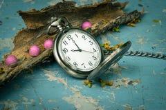 Pocketwatch med torrt trä Royaltyfri Bild