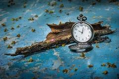 Pocketwatch med torrt trä Arkivfoto