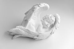 Poco angelo di sonno su fondo bianco, in bianco e nero Immagini Stock