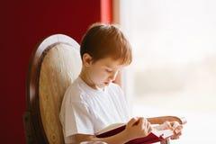 Poco 7 anni del ragazzo che legge un libro Immagine Stock