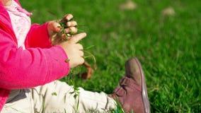 Poco bebé lindo que se sienta en la hierba verde y que juega con las hojas amarillas almacen de video