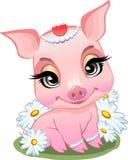 Poco cerdo que se sienta en margaritas ilustración del vector