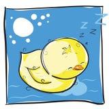 Poco chichk el dormir Fotografía de archivo libre de regalías