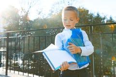Poco colegial elegante 6, 7 años en vidrios con los libros y mochila Parque soleado del otoño del fondo, hora de oro fotografía de archivo