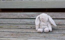 Poco conejo de conejito perdido en un banco de madera Imagen de archivo