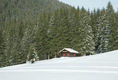 Poco cottage ha perso nella foresta Immagini Stock