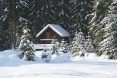 Poco cottage nella foresta fotografia stock