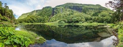 Poco DA Ribeira hace Ferreiro, isla de Flores, Azores, Portugal Imagen de archivo