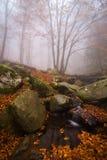 Poco escondrijo con agua en el bosque del parque natural de Montseny Imagen de archivo libre de regalías