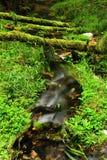 Poco fiume Immagini Stock Libere da Diritti