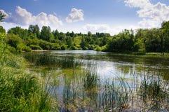 Poco fiume in terre selvagge fra le colline invase dalla foresta all'Unione Sovietica immagini stock libere da diritti