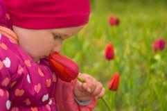 Poco flor adorable del tulipán el oler de la muchacha en el día de primavera temprano fotografía de archivo libre de regalías