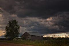Poco granero y un árbol de abedul debajo de las nubes de trueno Fotos de archivo libres de regalías