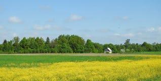 Poco hogar y abeja encorchan en el campo, Lituania Foto de archivo libre de regalías