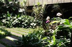 Poco jardín Fotografía de archivo libre de regalías