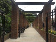 Poco jardín - jardines de Cleary en Londres imagen de archivo libre de regalías