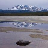 Poco lago di punta il Yukon T Canada Fox di riflessione fotografia stock