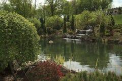 Poco lago nel giardino Immagini Stock