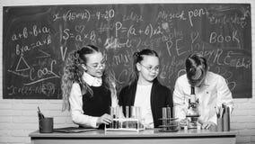 Poco ni?os en la lecci?n de la escuela qu?mica De nuevo a escuela estudiantes que hacen experimentos con el microscopio El d?a de imagen de archivo