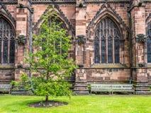 Poco parco nella cattedrale di Chester Immagine Stock Libera da Diritti