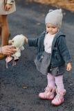 Poco paseo del bebé en el camino del parque entre árboles amarillos en el otoño fotografía de archivo