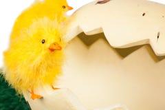 Poco polluelo de Pascua con una cáscara de huevo quebrada foto de archivo