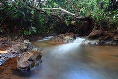 Poco río Fotografía de archivo