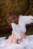 Poco ragazzo di angelo Immagine Stock