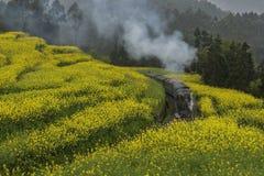 Poco tren del motor de vapor en Jiayang, China fotografía de archivo