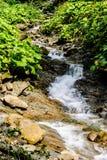 Początki halna rzeka zdjęcia royalty free