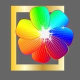 Pocztówka Maszerować 8, z kwiatem Ilustracja może używać w gazetce, broszurki, pocztówki, bilety, reklamy, banne Zdjęcia Royalty Free