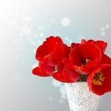 Pocztówka z eleganckimi kwiatów tulipanami Zdjęcia Stock
