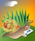 poczta ślimak ilustracja wektor