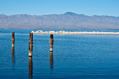 Poczta w wodzie przy Salton Morzem Zdjęcia Stock