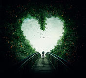 podążać serce twój Fotografia Stock