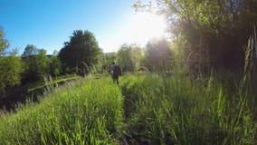 Podąża backpacker wycieczkowicz obsługuje odprowadzenie w dzikich drewnach wycieczkuje lub trekking przygoda w outdoors zieleniej zbiory