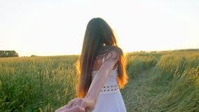 Podąża ja Szczęśliwe pary mienia ręki, biegający na złotym pszenicznym polu outdoors i mieć zabawę, pary odprowadzenie na łące zdjęcie wideo