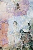 Podławi farby i tynku pęknięcia Obrazy Stock