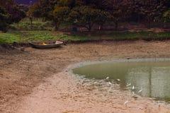 Podławy łódkowaty żuraw Obrazy Stock