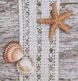 Podławy modny tło z seashells i koronka na starym drewnie Zdjęcie Royalty Free