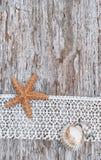 Podławy modny tło z seashells i koronka na starym drewnie Fotografia Stock