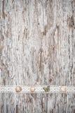 Podławy modny tło z seashells i koronkowa tkanina na starym zalecamy się Zdjęcia Stock