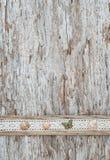 Podławy modny tło z seashells i koronkowa tkanina na starym zalecamy się Zdjęcie Stock